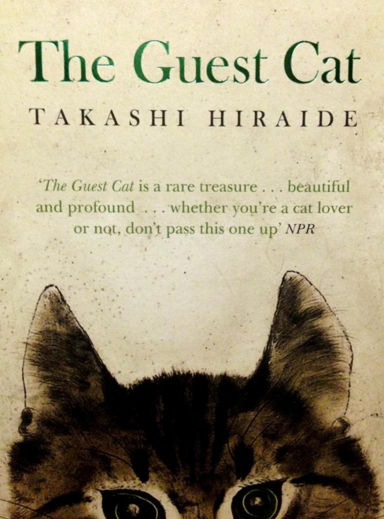 guestcat